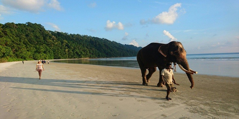 Elephant Beach Trek, Andamans