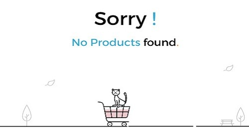 no-product-found