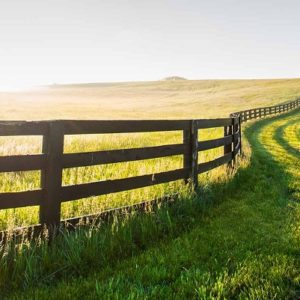 Make Your Land More Appealing to Investors