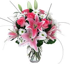 White daisies and pink lilies