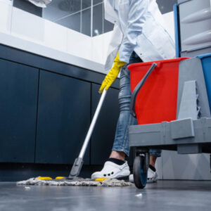 Janitorial companies